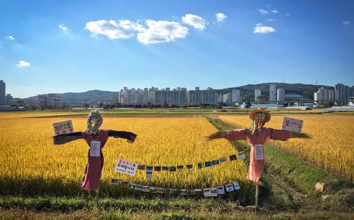 박연지(논두렁 밭두렁 마을 축제)